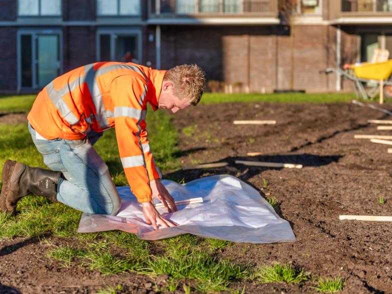 nieuws en projecten van wijk groen